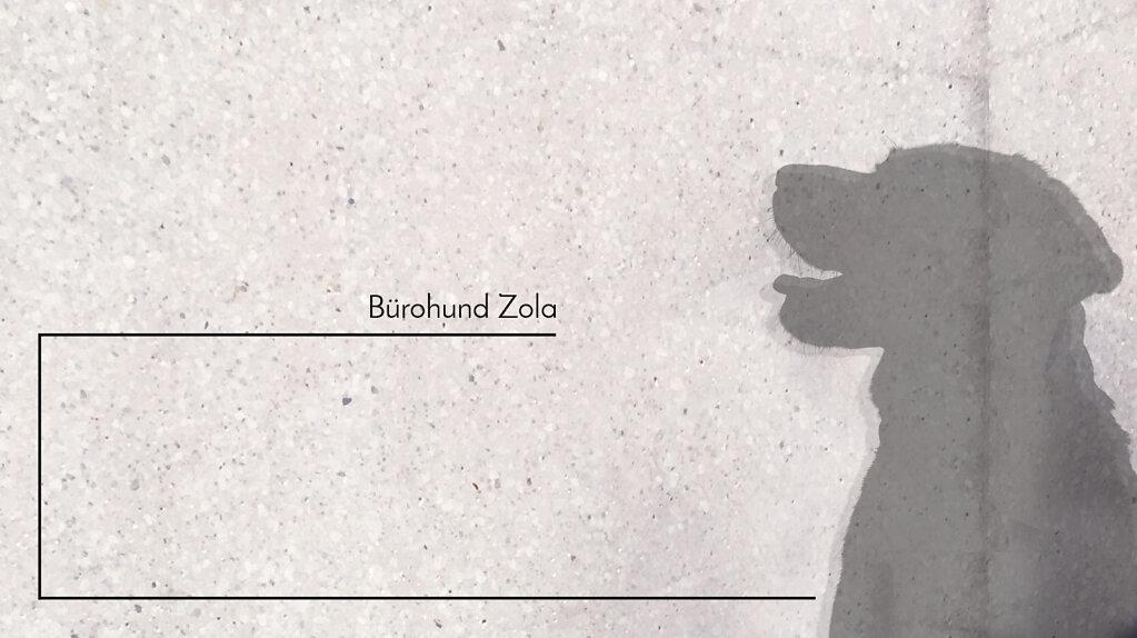 toebben-architektur-architekt-muenster-nordwalde-buerohund.jpg